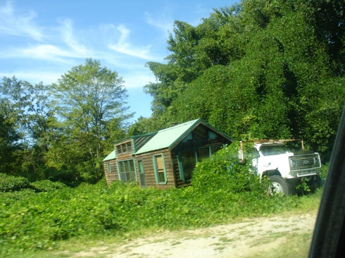 kudzu overgroeid huis